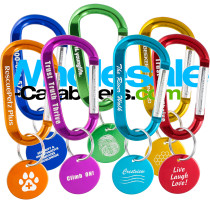 Custom Engraved Carabiner Keychains with Medallion Tag